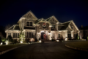 Commercial Outdoor Lighting and Holiday Decorations, Businesses, Restaurants, Professional Centers, Trees, Walkways