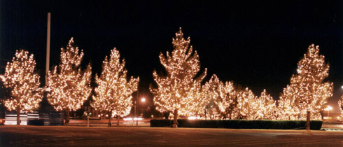 holiday lighting commercial parking lots businesses maryland dc - Christmas Lights Maryland