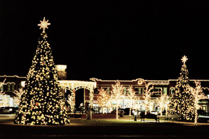 Exterior Lighting. Commercial Outdoor Lighting and Holiday Decorations ...