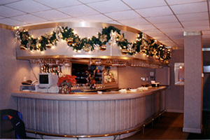 Commercial Holiday Decorating And Lighting Services By
